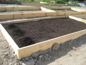 <b>After Soil</b>