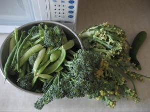 Harvest Jul29