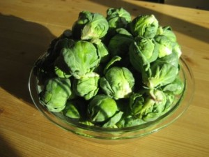 Brussel Sprout Harvest at LocalDelicious.com